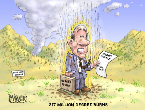 Cartoon: 217 degree burns (medium) by karlwimer tagged wildfire,fire,insurance,business,economics,damage