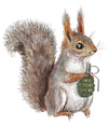 Cartoon: Dangerous squirrel (small) by amorroz tagged squirrel