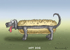 Cartoon: HOT DOG (small) by marian kamensky tagged hot,dog