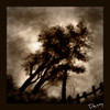 Cartoon: My second photoshop experience (small) by Krinisty tagged trees,sky,art,krinisty,photoshop