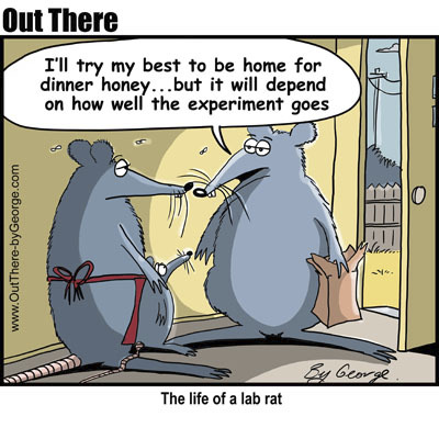 Cartoon: lab rat (medium) by George tagged lab,rat