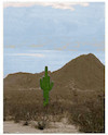 Cartoon: die wüste lebt (small) by ab tagged wüste,steppe,kakteen,natur,zeichen