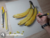 Cartoon: Drawing Bananas - 3D Art (small) by Art by Mihai Alin Ion tagged drawing,painting,illustration,fruits,bananas,mihaialinion,3dart,realisticart,drawingbananas