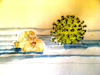 Cartoon: ... (small) by herranderl tagged corona,virus,pandemie