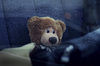 Cartoon: Teddy (small) by amir05 tagged amir,kurbanov,moscow,russia