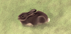 Cartoon: Silent Visitor (small) by alesza tagged rabbit,campground,silent,visitor,animal