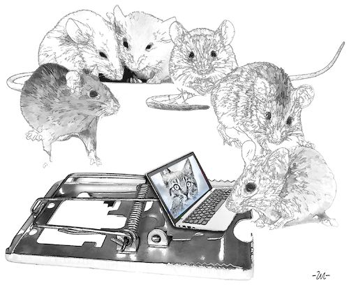 Cartoon: Mousetrap (medium) by zu tagged mousetrap,laptop,mouse