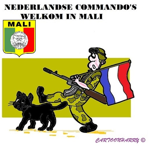 Cartoon: Mali (medium) by cartoonharry tagged mali,zwartekat,nederland,commando,welkom