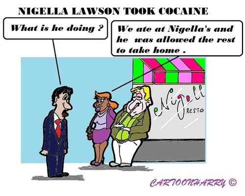 Cartoon: Nigella Lawson (medium) by cartoonharry tagged dinner,nigellalawson
