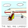 Cartoon: Landung (small) by Pascal Kirchmair tagged the,igel,has,landed,witz,humour,umorismo,humorous,spirito,humor,illustration,drawing,zeichnung,pascal,kirchmair,cartoon,caricature,karikatur,ilustracion,dibujo,desenho,ink,disegno,ilustracao,illustrazione,illustratie,dessin,de,presse,tekening,teckning,cartum,vineta,comica,vignetta,caricatura,avion,airplane,aereo,aircraft,flugzeug,landung,flughafen,airport,aeroport,aeropuerto,aviao,aeroporto,gangway