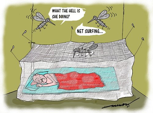Cartoon: Net savvy mosquitoe (medium) by kar2nist tagged mosquitoe,blood,net