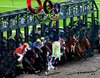 Cartoon: opympix Horse race (small) by kar2nist tagged olympics,london,eqestarian,sea,horse,starting,line
