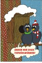 Cartoon: Stare im Winter (small) by MiS09 tagged winter,vögel,frost,schnee,kälte,tiefkühlkost,frühling,februar
