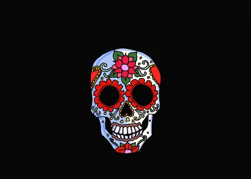 Cartoon: Spanish Skull (medium) by tonyp tagged arp,skull,red,flowers