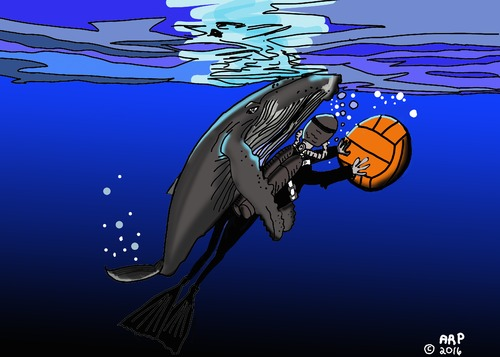 Cartoon: WHALE WITH BALL (medium) by tonyp tagged arp,whale,ball,water,polo,playing