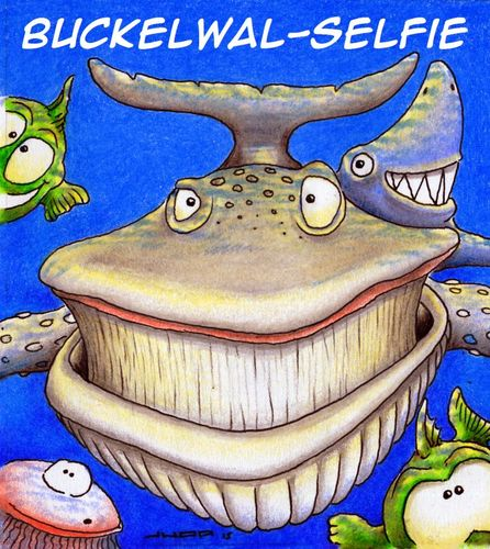 Cartoon: Buckelwal-Selfie (medium) by Jupp tagged wal,selfie,cartoon,jupp