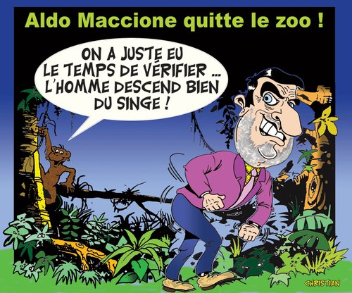 Cartoon: ALDO MACCIONE (medium) by CHRISTIAN tagged maccione,ferme,celebrites,afrique