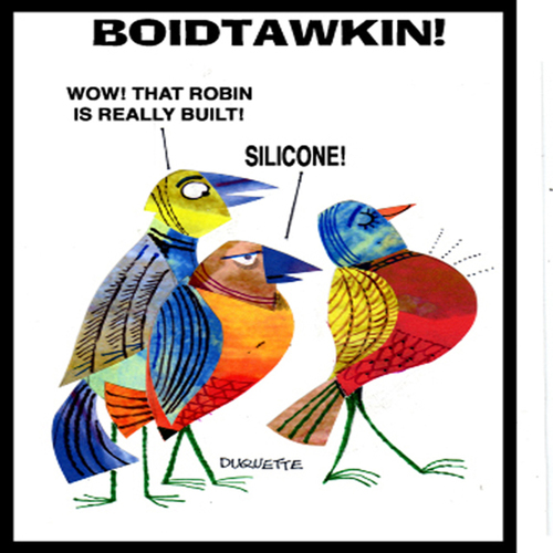 Cartoon: BOIDTAWKIN (medium) by STEVEN DUQUETTE tagged birds,stylized,colorful,cartoon,humorous