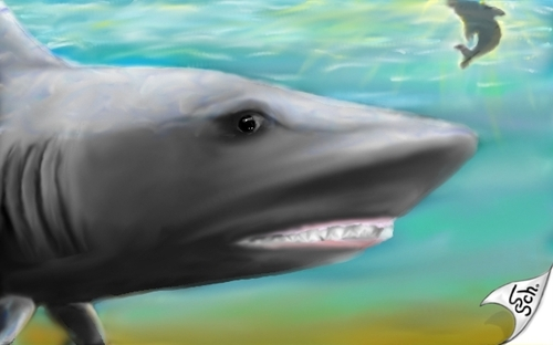 Cartoon: Sharkwater (medium) by swenson tagged morphingtargetpainting,hai,shark,see,meer,wahle,wal,moon,mond,sky,haven,himmel