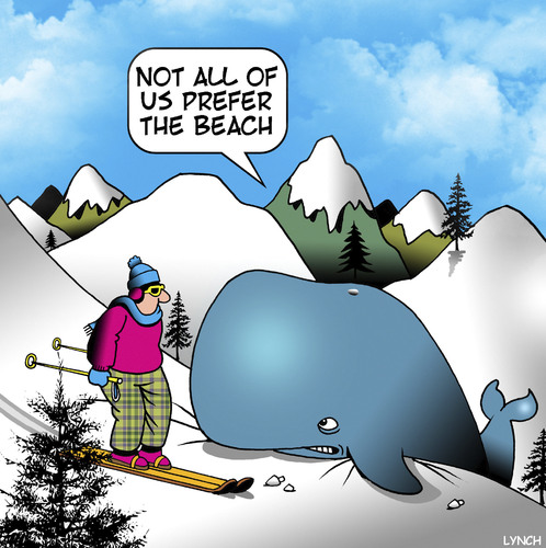Cartoon: Not all of us (medium) by toons tagged beaching,whale,skiing,save,the,beached,sport,winter,sports,beaching,whale,skiing,save,the,beached,sport,winter,sports