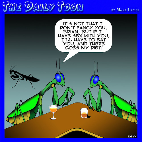 Cartoon: Praying Mantis (medium) by toons tagged dieting,insects,praying,mantis,one,night,stand,dieting,insects,praying,mantis,one,night,stand