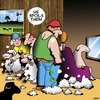 Cartoon: Spoilt (small) by toons tagged sheep,shearing,spoilt,haircur,barber,hairdresser,farming,lamb