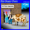 Cartoon: Tattoo removal (small) by toons tagged cows,tattoos,cow,branding,tattoo,removal,farm,animals