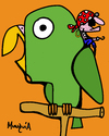 Cartoon: Pirates parrot (small) by Munguia tagged pirate,parrot,perico,pirata,munguia,costa,rica,birds,cartoon