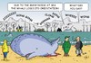 Cartoon: Whales (small) by JotKa tagged capital,money,coastal,whales,north,sea,natural,environment,marine,exploitation,offshore,animal,welfare,young,whale,deaths,profit,seas,oceans,fish,fauna,wind,power,petroleum,gas,capitalists,environmentally,die
