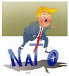 Cartoon: Trump will trash the expired NAT (small) by Afghancartoon tagged afghanistan,nato,bahar,hiba,rahio