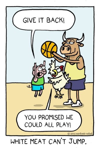 Cartoon: white meat cant jump (medium) by sardonic salad tagged white,meat,pig,chicken,bull,basketball,cartoon,comic,sardonic,salad