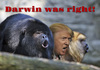 Cartoon: Trump and the Howling Monkeys (small) by Alf Miron tagged howler,monkey,donald,trump,shouting,republicans,usa,presidential,elections,democracy,creationism,darwin,evolution